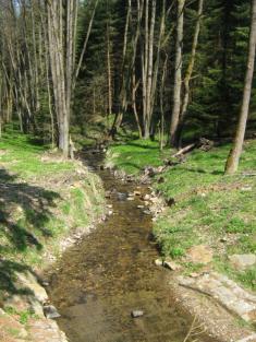 Dirmailerský potok (přítok Nemanického potoka) zmostku uKřížové Huti (vpravo odsilnice směr Závist zNemanic). Dodnes lze vpotoce akolem něj nalézat větší či menší kousky skla, které upomínají nasklářskou minulost tohoto místa.