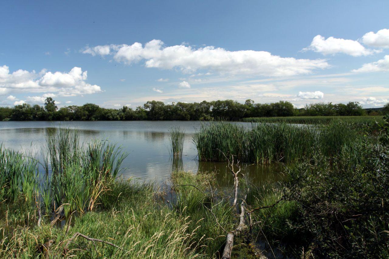 Postřekovské rybníky